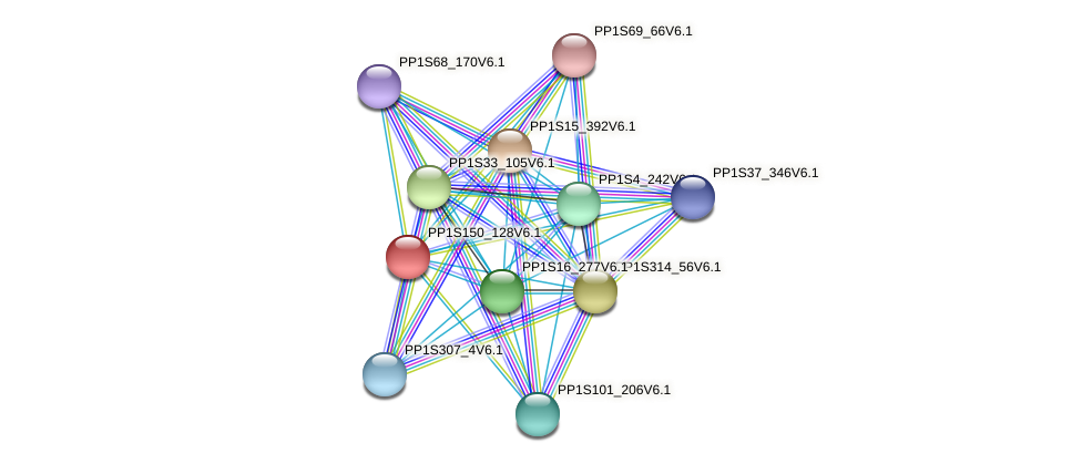 PP1S150_128V6.1 protein (Physcomitrella patens) - STRING interaction network