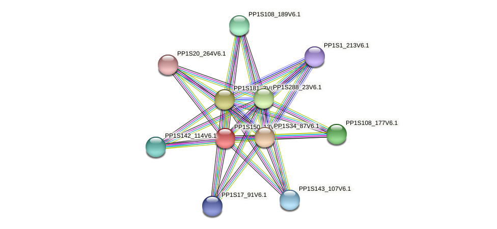 PP1S150_13V6.1 protein (Physcomitrella patens) - STRING interaction network