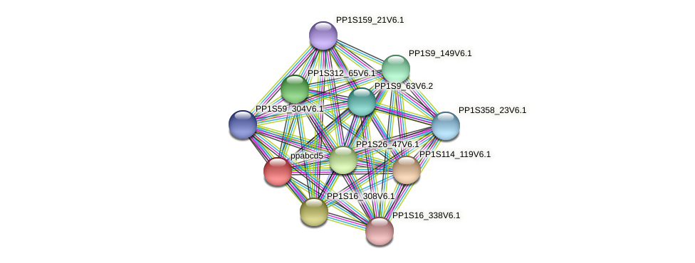 ppabcd5 protein (Physcomitrella patens) - STRING interaction network