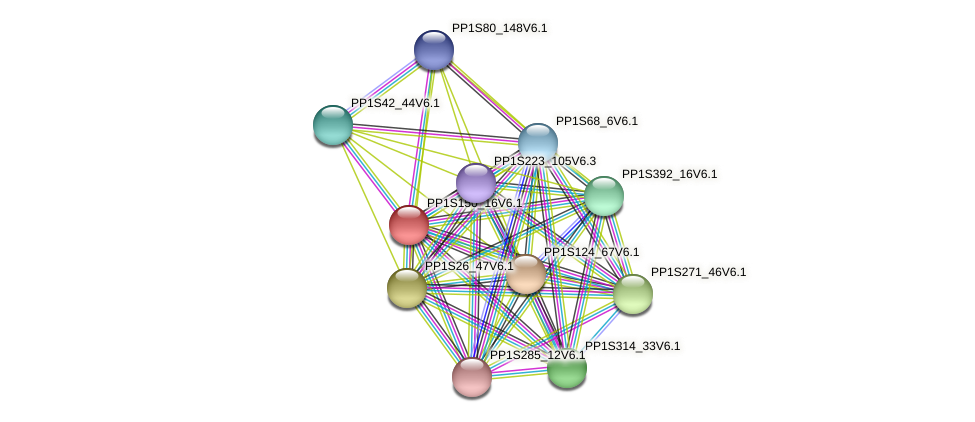 PP1S150_16V6.1 protein (Physcomitrella patens) - STRING interaction network
