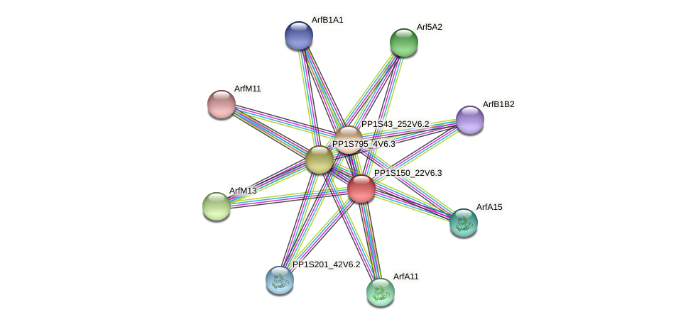 PP1S150_22V6.3 protein (Physcomitrella patens) - STRING interaction network