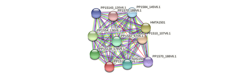 PP1S150_28V6.1 protein (Physcomitrella patens) - STRING interaction network