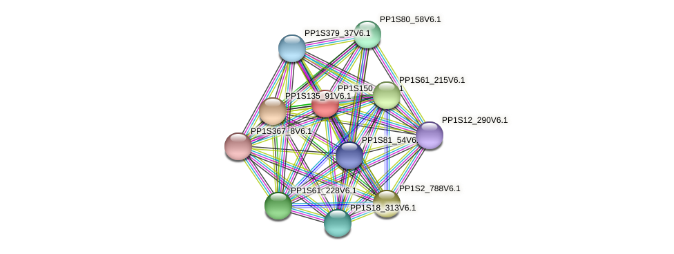 PP1S150_90V6.1 protein (Physcomitrella patens) - STRING interaction network