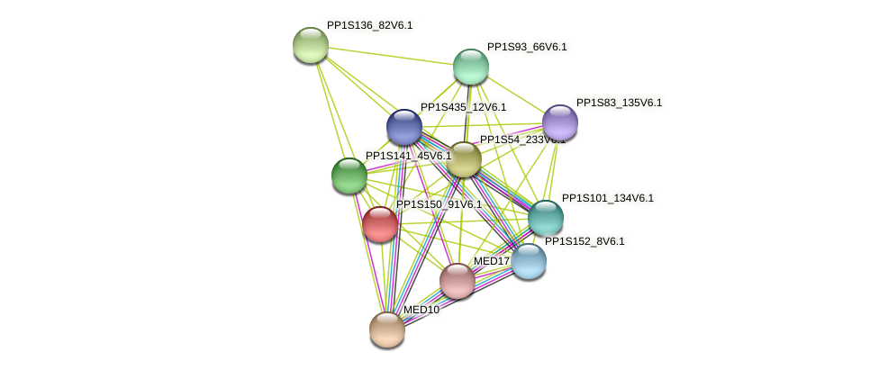 PP1S150_91V6.1 protein (Physcomitrella patens) - STRING interaction network