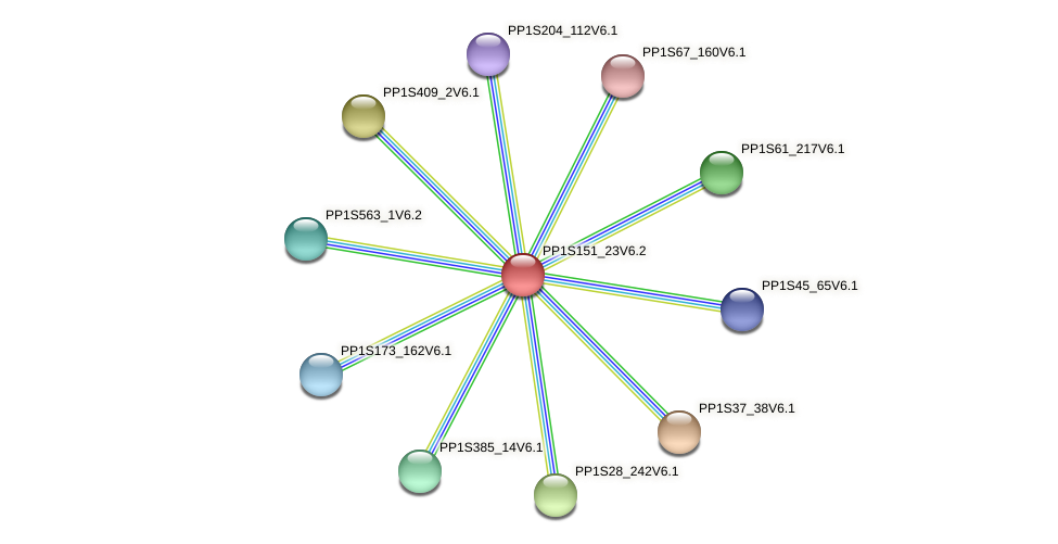 PP1S151_23V6.1 protein (Physcomitrella patens) - STRING interaction network