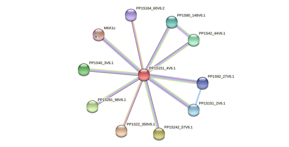 PP1S151_4V6.1 protein (Physcomitrella patens) - STRING interaction network