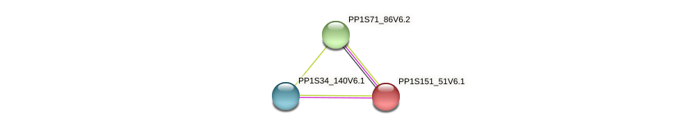 PP1S151_51V6.1 protein (Physcomitrella patens) - STRING interaction network