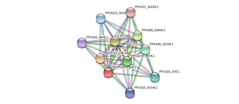PP1S151_75V6.1 protein (Physcomitrella patens) - STRING interaction network