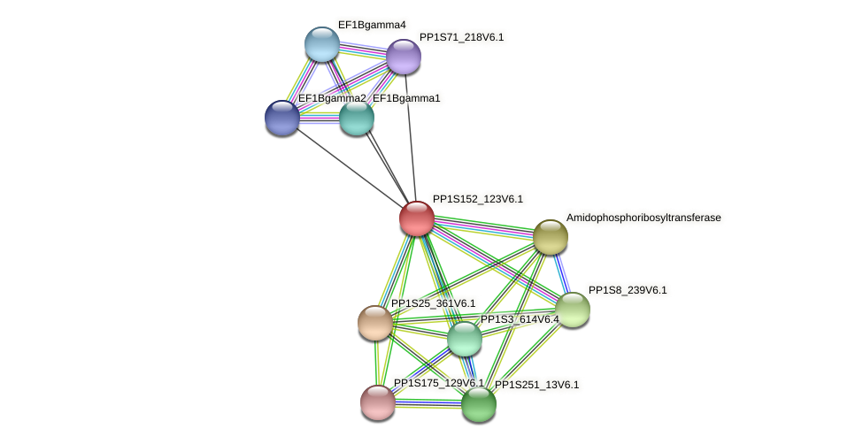 PP1S152_123V6.1 protein (Physcomitrella patens) - STRING interaction network
