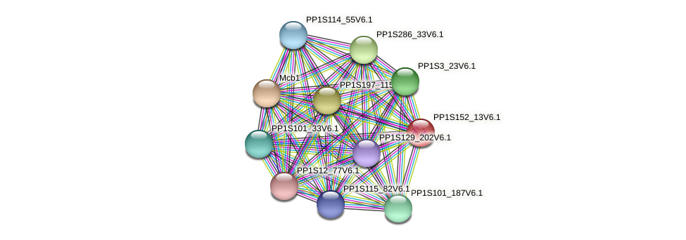 PP1S152_13V6.1 protein (Physcomitrella patens) - STRING interaction network