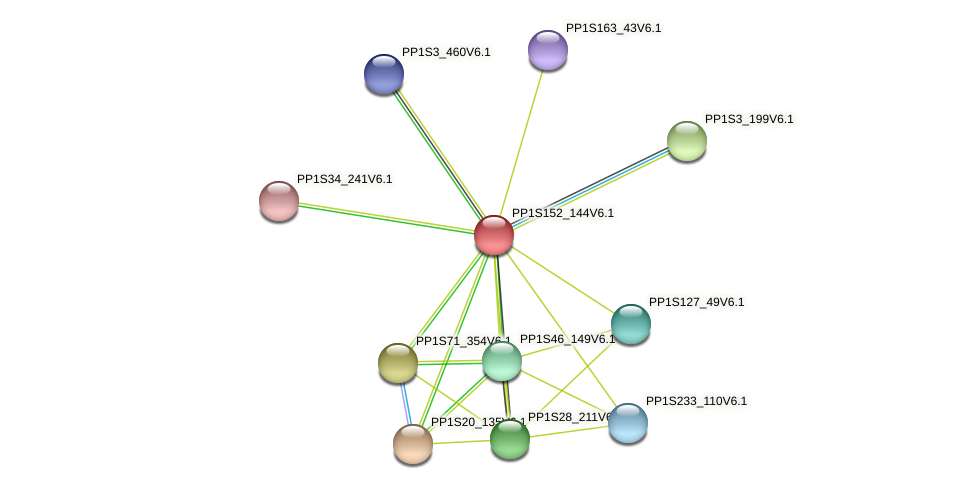 PP1S152_144V6.1 protein (Physcomitrella patens) - STRING interaction network