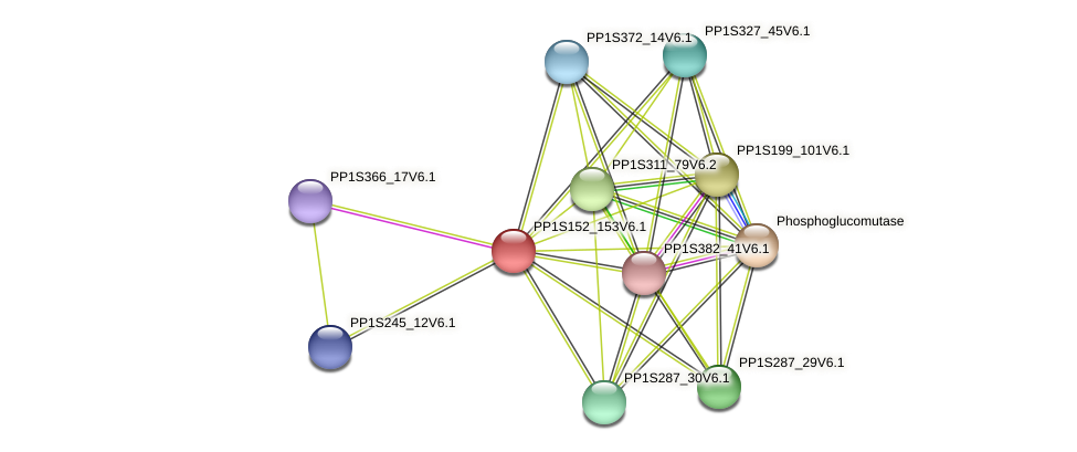 PP1S152_153V6.1 protein (Physcomitrella patens) - STRING interaction network