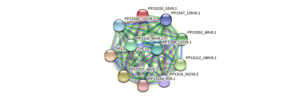 PP1S152_53V6.1 protein (Physcomitrella patens) - STRING interaction network