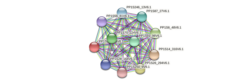 PP1S152_63V6.1 protein (Physcomitrella patens) - STRING interaction network