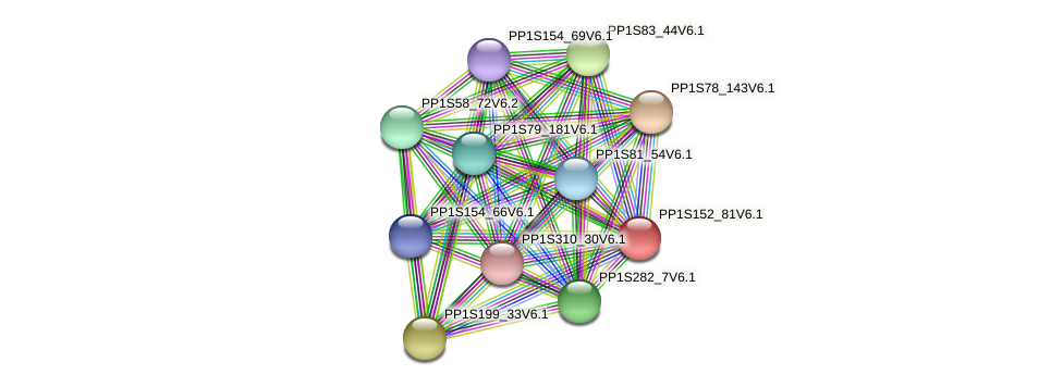 PP1S152_81V6.1 protein (Physcomitrella patens) - STRING interaction network