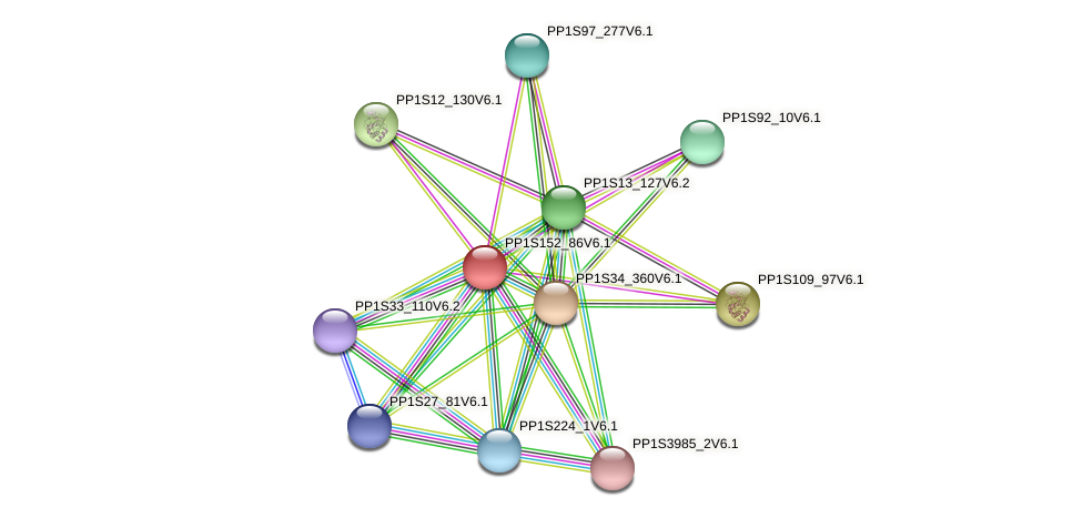 PP1S152_86V6.1 protein (Physcomitrella patens) - STRING interaction network