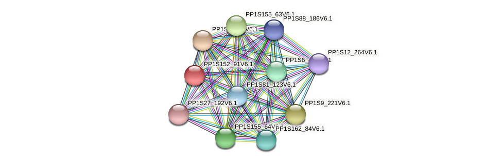PP1S152_91V6.1 protein (Physcomitrella patens) - STRING interaction network