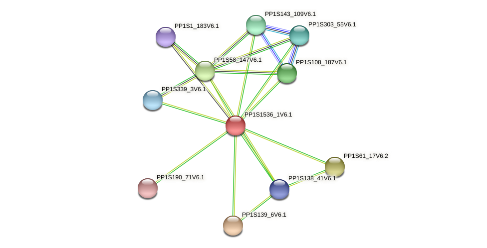 PP1S1536_1V6.1 protein (Physcomitrella patens) - STRING interaction network