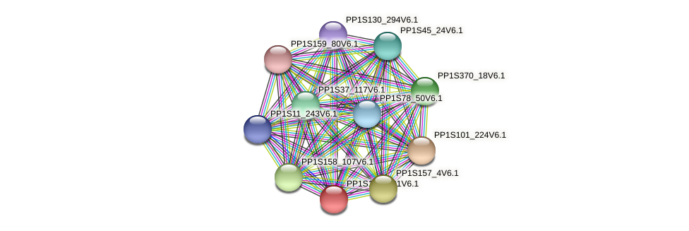 PP1S153_101V6.1 protein (Physcomitrella patens) - STRING interaction network