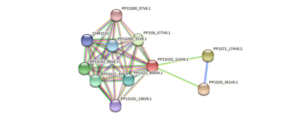 PP1S153_114V6.1 protein (Physcomitrella patens) - STRING interaction network