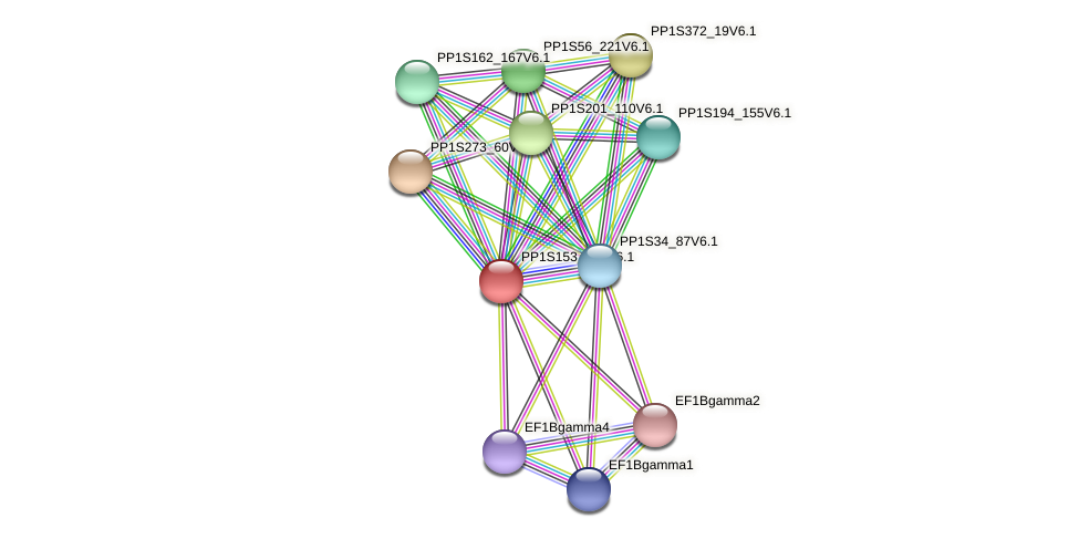 PP1S153_146V6.1 protein (Physcomitrella patens) - STRING interaction network