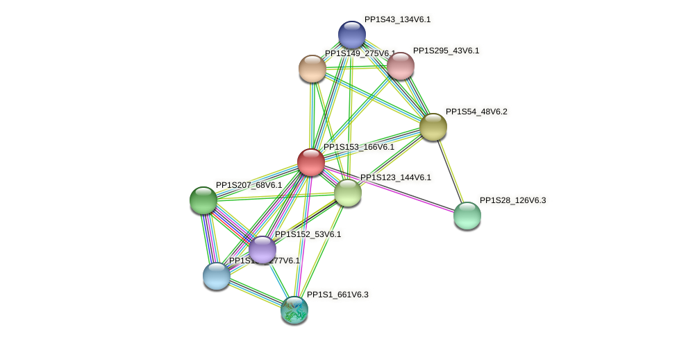 PP1S153_166V6.1 protein (Physcomitrella patens) - STRING interaction network