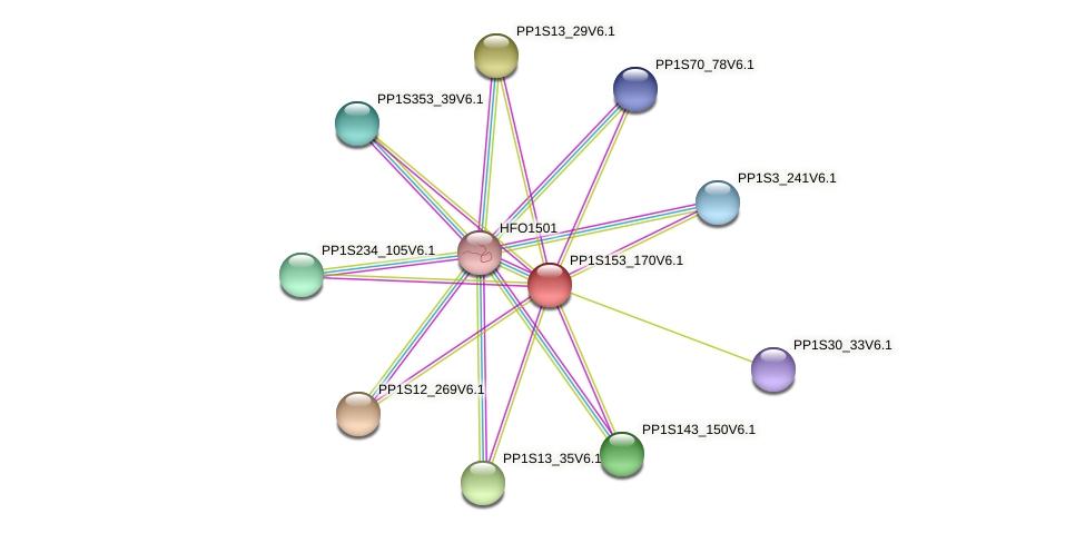 PP1S153_170V6.1 protein (Physcomitrella patens) - STRING interaction network