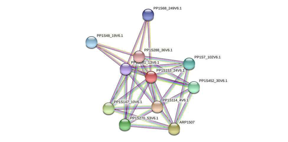 PP1S153_24V6.1 protein (Physcomitrella patens) - STRING interaction network