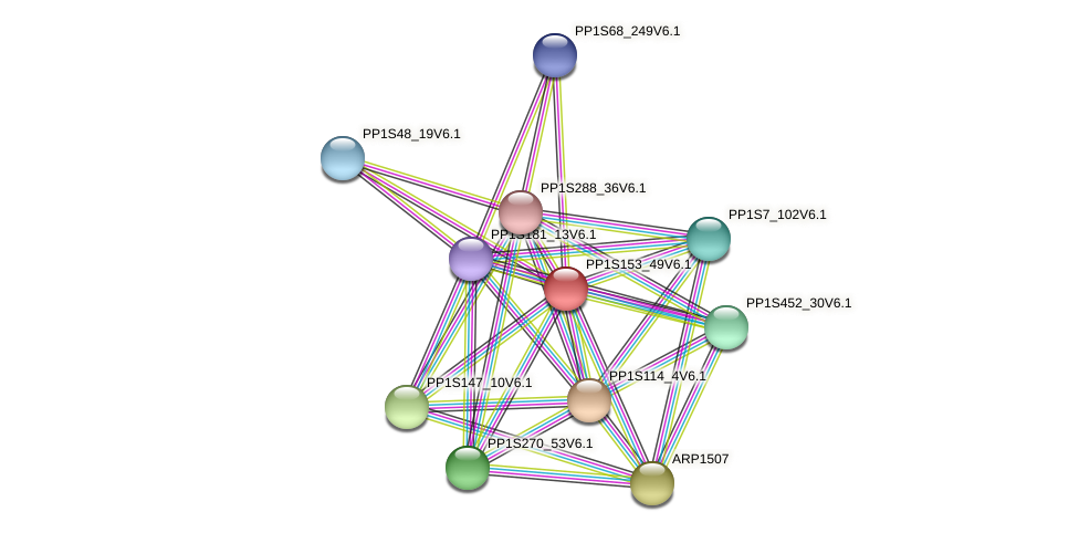 PP1S153_49V6.1 protein (Physcomitrella patens) - STRING interaction network