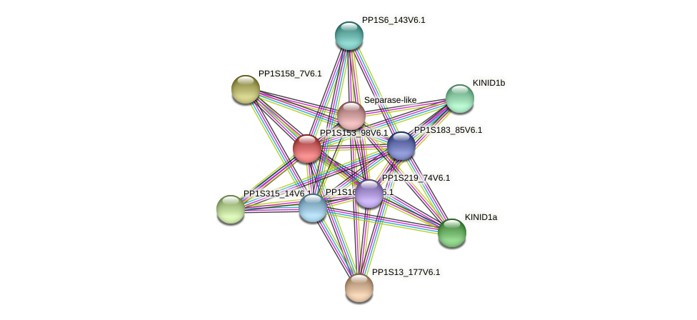 PP1S153_98V6.1 protein (Physcomitrella patens) - STRING interaction network