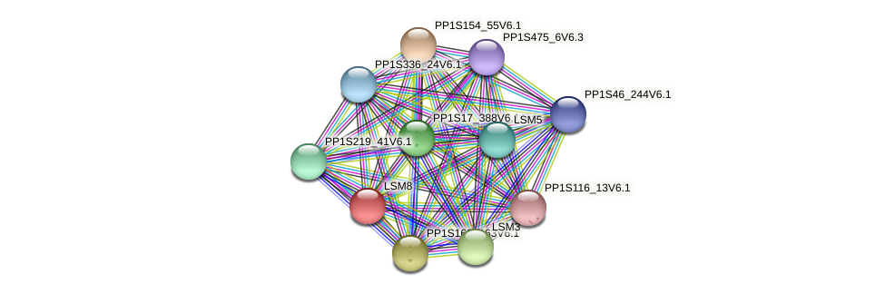 PP1S154_125V6.1 protein (Physcomitrella patens) - STRING interaction network