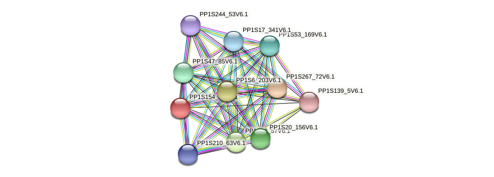 PP1S154_14V6.1 protein (Physcomitrella patens) - STRING interaction network