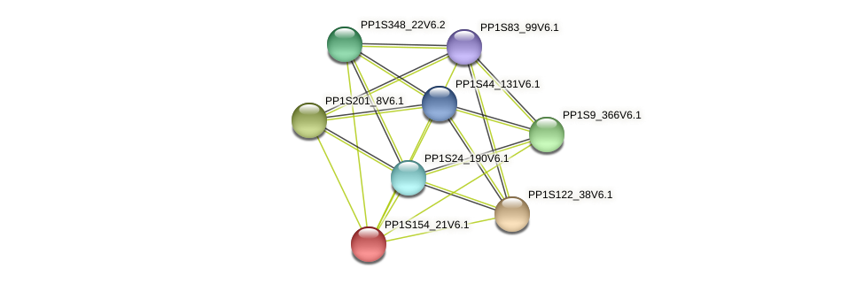 PP1S154_21V6.1 protein (Physcomitrella patens) - STRING interaction network
