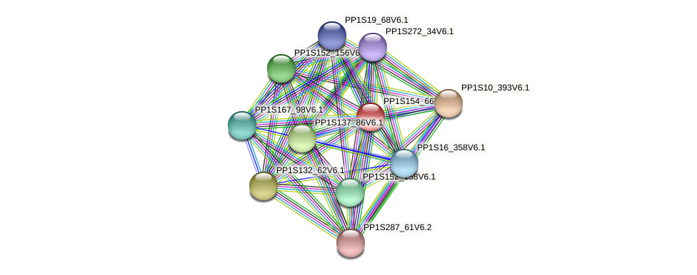 PP1S154_66V6.1 protein (Physcomitrella patens) - STRING interaction network