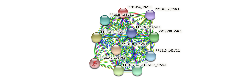 PP1S154_79V6.1 protein (Physcomitrella patens) - STRING interaction network