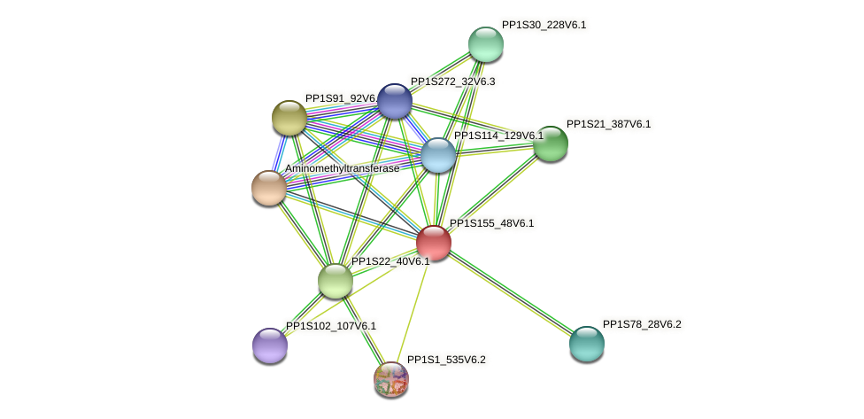 PP1S155_48V6.1 protein (Physcomitrella patens) - STRING interaction network