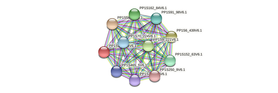 PP1S155_64V6.1 protein (Physcomitrella patens) - STRING interaction network
