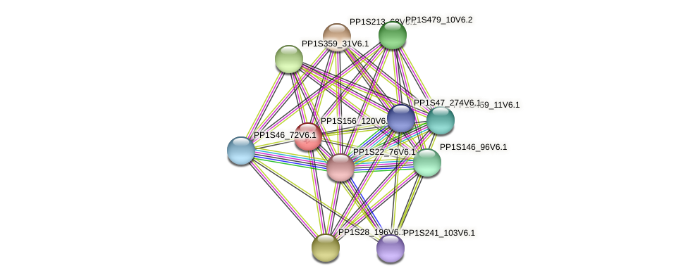 PP1S156_120V6.1 protein (Physcomitrella patens) - STRING interaction network