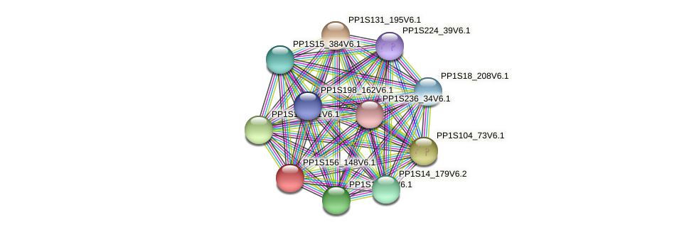 PP1S156_148V6.1 protein (Physcomitrella patens) - STRING interaction network