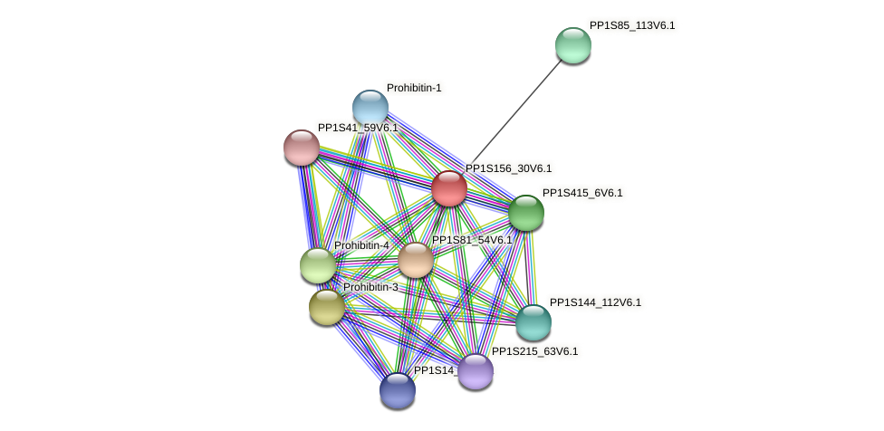 PP1S156_30V6.1 protein (Physcomitrella patens) - STRING interaction network