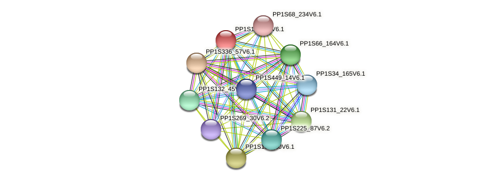 PP1S156_48V6.1 protein (Physcomitrella patens) - STRING interaction network