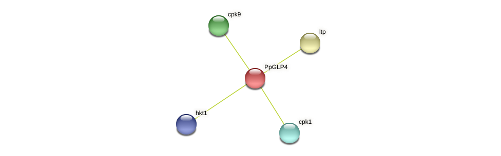 PP1S156_53V6.1 protein (Physcomitrella patens) - STRING interaction network