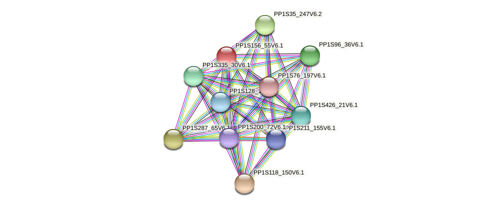 PP1S156_55V6.1 protein (Physcomitrella patens) - STRING interaction network