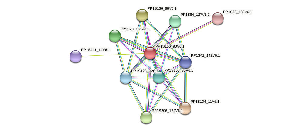 PP1S156_90V6.1 protein (Physcomitrella patens) - STRING interaction network