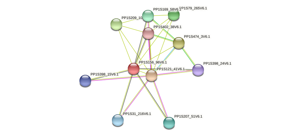 PP1S156_96V6.1 protein (Physcomitrella patens) - STRING interaction network