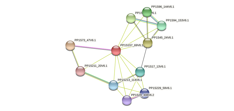 PP1S157_69V6.1 protein (Physcomitrella patens) - STRING interaction network
