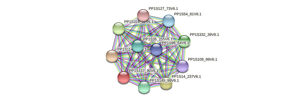 PP1S157_90V6.1 protein (Physcomitrella patens) - STRING interaction network