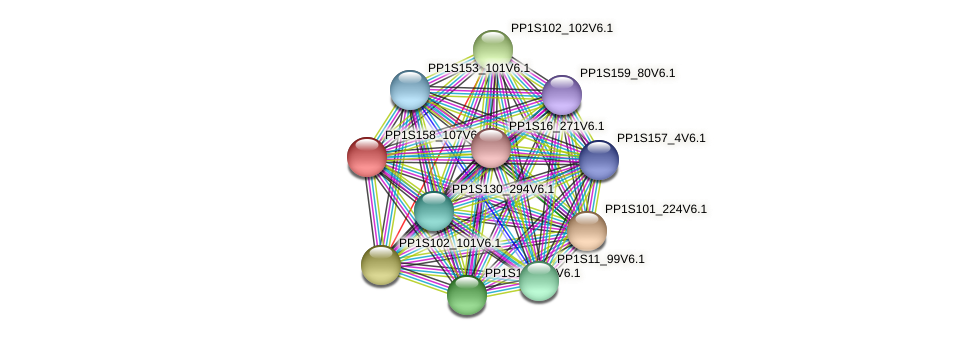 PP1S158_107V6.1 protein (Physcomitrella patens) - STRING interaction network