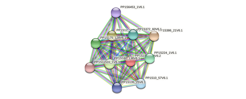 PP1S158_108V6.1 protein (Physcomitrella patens) - STRING interaction network