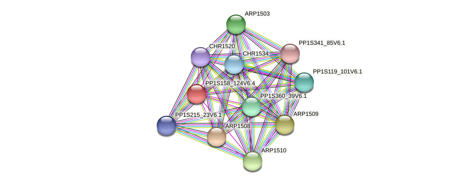 PP1S158_124V6.1 protein (Physcomitrella patens) - STRING interaction network